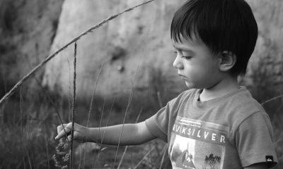 Los bebés expuestos a la violencia doméstica tienen un desarrollo cognitivo inferior a la media